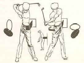 Danburg Golf - Whip